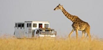 Planifica tu viaje a África