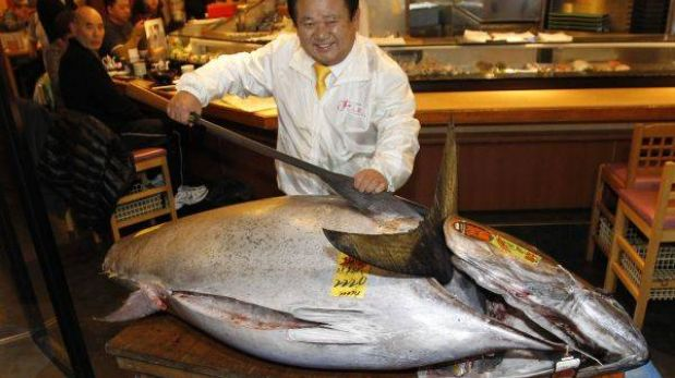 Atún rojo fue vendido en más de 1,7 millones de euros en Japón