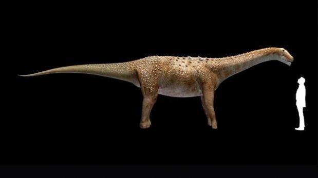 Hallan fósiles de un dinosaurio de 15 metros con 8 centímetros de cerebro