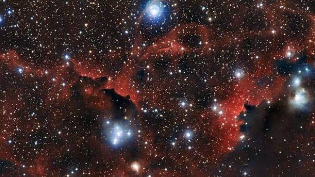 """La impresionante foto de una """"gaviota cósmica"""""""