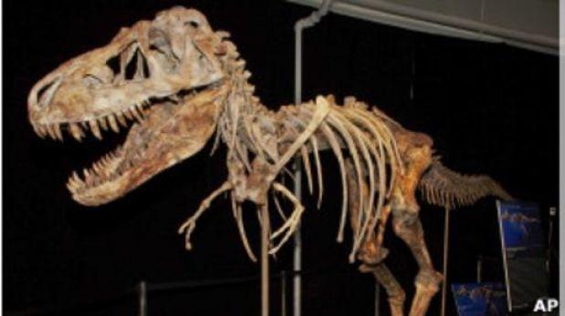 EE.UU devolverá esqueletos de dinosaurios a Mongolia