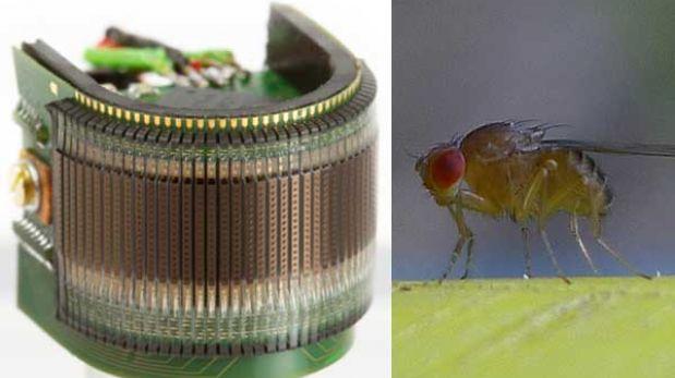 Un ojo artificial inspirado en los de una mosca