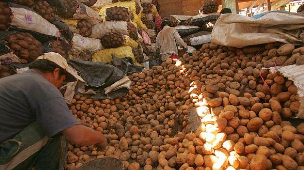 Producción de papa será de 4,5 millones toneladas en 2013