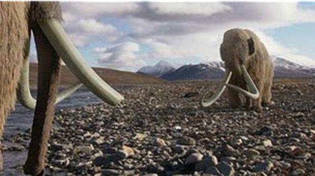 ¿El hallazgo de sangre líquida de mamut hará posible su clonación?