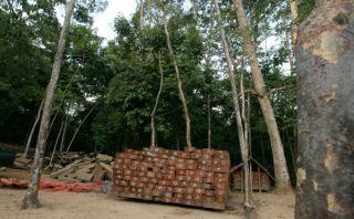 Perú será sede de la II Reunión Ministerial Forestal de APEC