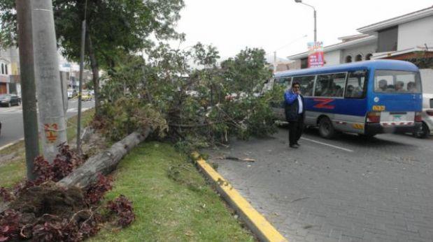 Arequipa: más de 50 mil viviendas se quedaron sin fluido eléctrico por vientos