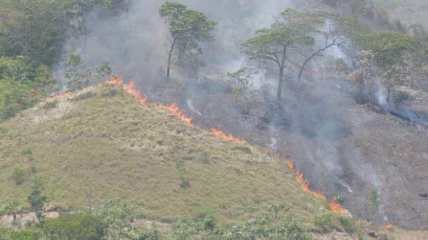 Cusco: incendio forestal afectó 80 hectáreas de pastos en Quispicanchis