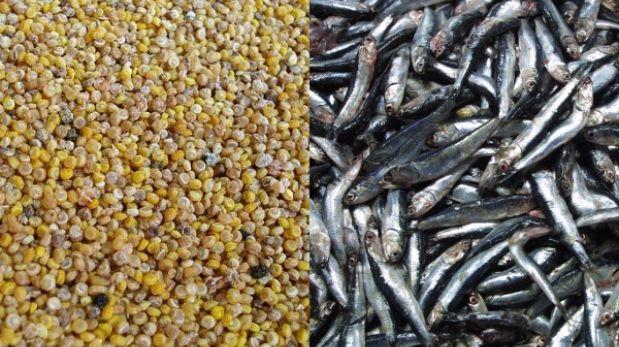 La anchoveta y la quinua: dos armas contra la desnutrición