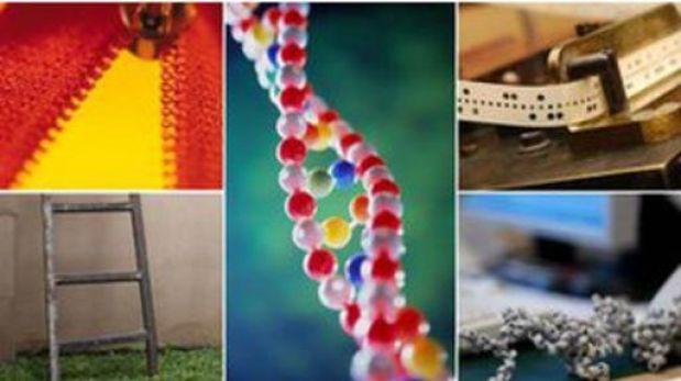 El genoma humano más antiguo fue decodificado en España