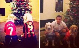 Alexis Sánchez vistió a sus perros con sus camisetas para Navidad