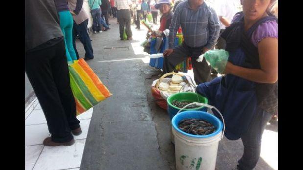 Arequipa: comerciantes venden camarones de río pese a veda