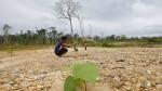 Los mineros artesanales de Tambopata quieren de nuevo su bosque - Noticias de vanessa flores