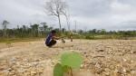 Los mineros que quieren recuperar el Tambopata - Noticias de minera escondida
