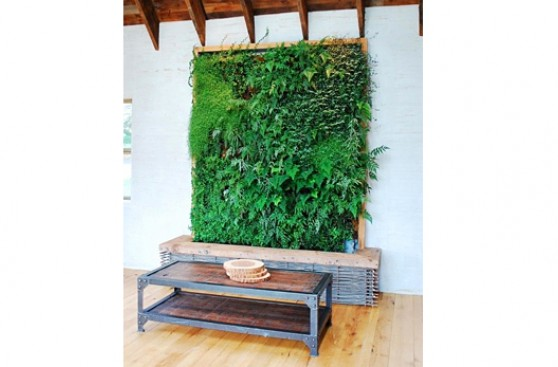 Cinco ideas creativas para tus jardines interiores