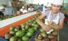 El sector agroexportador será el más golpeado con El Niño
