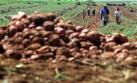 Invertirán S/.2.000 mlls. en planta de fertilizantes en Piura