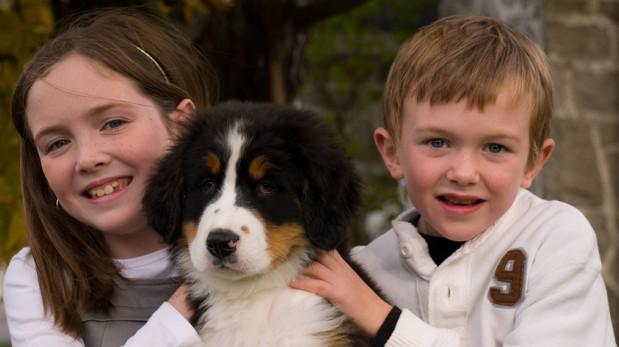 ¿Cómo saber si tu hijo está listo para una tener una mascota?