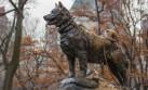 Estatuas en 4 patas: Estas esculturas están dedicadas a perros