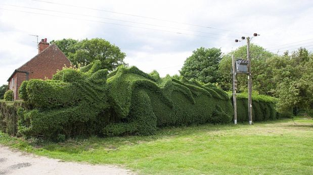¿Un dragón en el jardín? Anciano lo esculpió durante 13 años