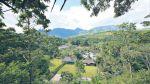 San Martín da el ejemplo para cuidar los bosques - Noticias de jorge cuenca