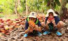 Tarapoto para niños: Ellos también pueden disfrutar de la selva