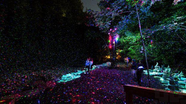 Bosque de luces: Esta instalación artística sorprende en Canadá