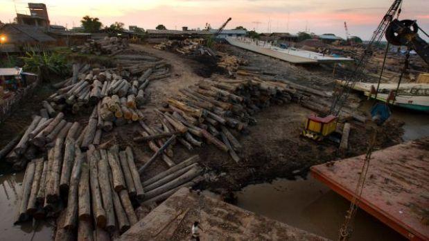 Editorial: Bosques ignorados