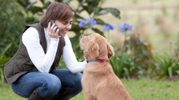 Viajeros llaman a casa en vacaciones para hablar con sus perros