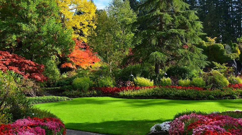Estos hermosos jardines parecen de un cuento de hadas for Jardines butchart