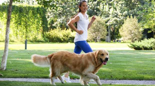 Por estas razones es bueno salir a correr con tu perro