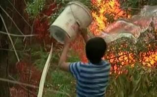 Así se luchó para apagar incendio en reserva natural de Chile