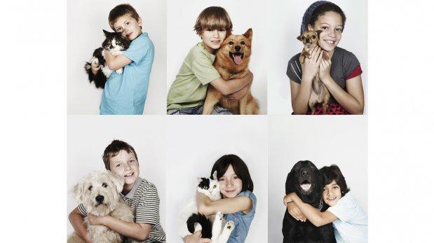 Enseña a tus hijos a respetar a las mascotas