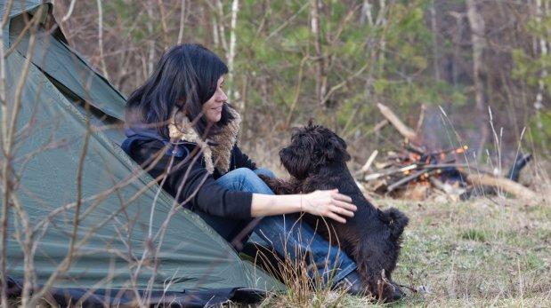 Lleva a tu mascota de campamento siguiendo estos consejos