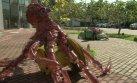 Brasil: Arte con basura de bahía de Río [VIDEO]