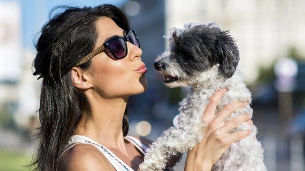Seis razones por las que tenemos que agradecer a nuestro perro