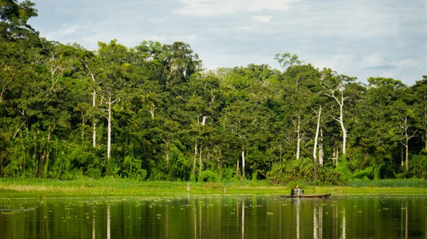 Consejos para viajar a zonas de conservación ambiental