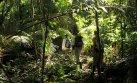 Feriado largo: rutas de trekking que puedes hacer en el Perú