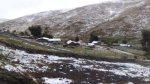 Sierra sur espera bajas temperaturas de hasta -18 grados - Noticias de moguegua