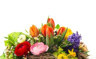 Aprende a hacer arreglos florales