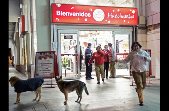El pánico de chilenos durante terremoto de 8,4 grados [FOTOS]