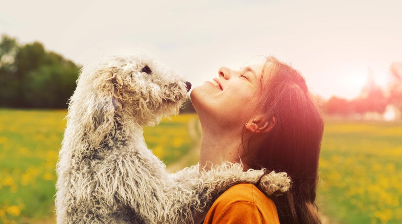 Mascota ¿sabes cuántas palabras puede entender tu perro?