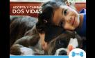 Wuf y la adopción de mascotas en la era digital