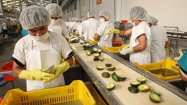 Modelo agroindustrial peruano llegó a la Universidad de Harvard