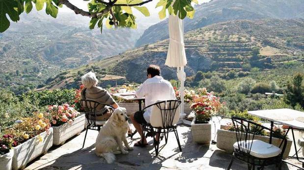 Lugares 'pet friendly' para quienes van a España con su mascota