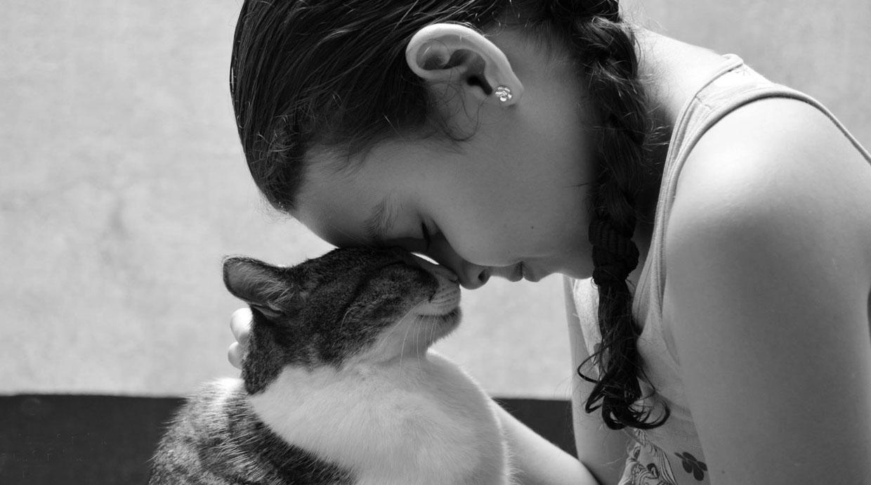 Fotógrafos que inmortalizan a tu mascota en una sesión de fotos