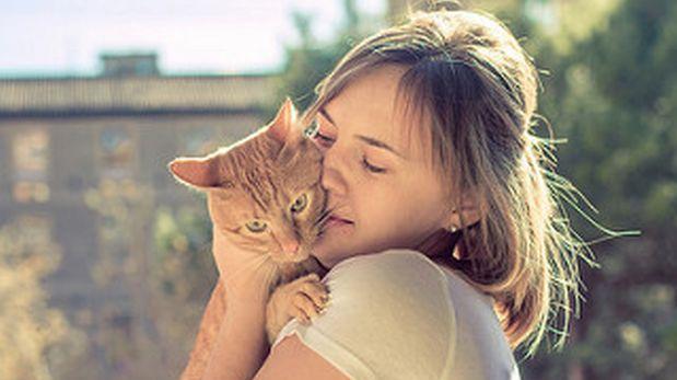 ¿Alérgica a los gatos? Si te gustan, hay solución