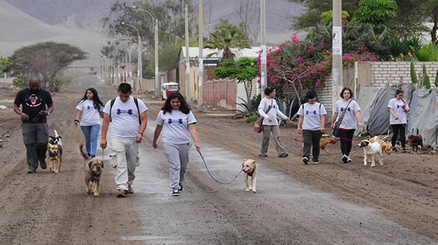 Voluntarios responden al llamado de WUF