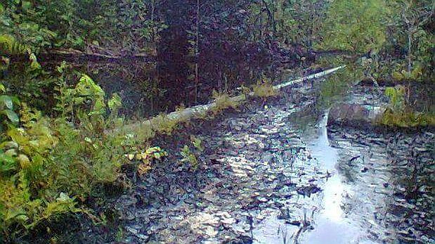 El OEFA supervisa un derrame de petróleo en Loreto