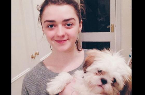 Famosos que impulsan la adopción de mascotas