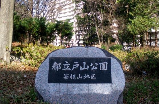 Estos son los 5 lugares que no querrás conocer en Japón
